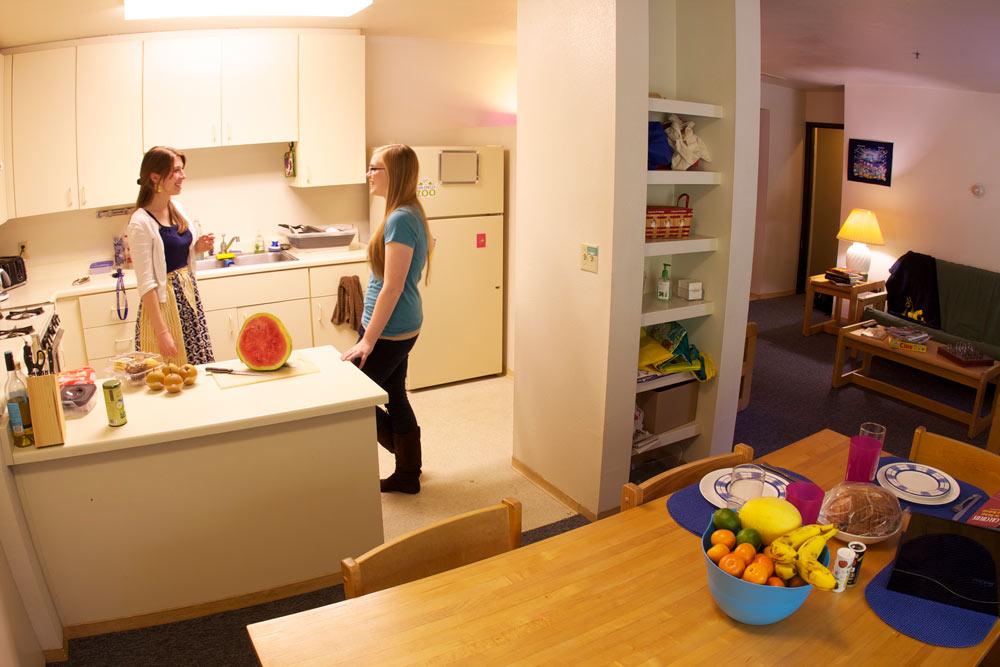 Grad Housing Living Room Shared Kitchen In Apartment Bedroom Floorplan