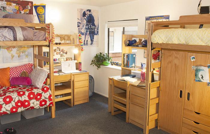 Single Dorm Room Layout Ideas